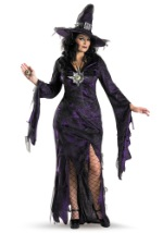 Plus Enchanting Sorceress Costume