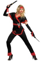 Dragon Lady Ninja Costume For Women