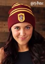 Harry Potter Gryffindor Hat