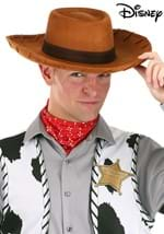 Deluxe Adult Woody Toy Story Hat