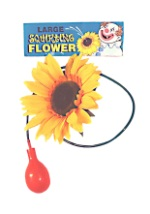 Funny Squirting Sunflower
