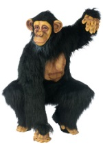 Adult Chimpanzee Suit