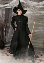 Plus Size Witch Womens Costume