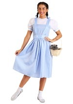 Dorothy Gale Costume