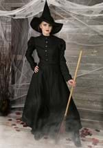 Deluxe Adult Witch Costume