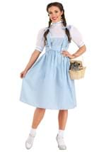 Dorothy Long Costume Dress