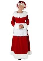 Plus Size Holiday Mrs Claus Costume