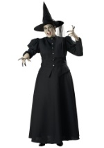 Plus Size Womens Witch Costume