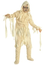 Boys The Mummy Costume