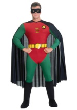 Male Robin Costume