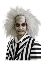 Adult Beetlejuice Costume Wig