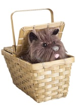 Deluxe Toto with Basket Accessory