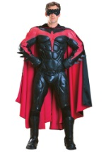 Authentic Adult Robin Costume